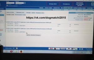 Результаты договорных матчей за 31 августа 2014 года фото 1