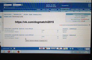 Результаты договорных матчей за 13 октября 2014 года фото 2