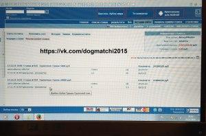 Результаты договорных матчей за 17 декабря 2014 года фото 2